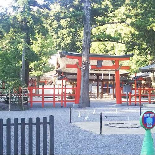 吉田神社 境内